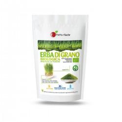 Erba di grano biologica macinata in polvere
